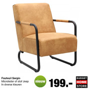 Budget Home Store - Nieuw! Fauteuil Sergio
